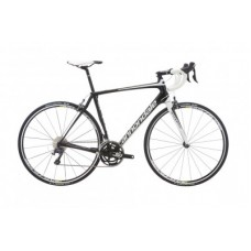 Synapse Carbon Ultegra 4